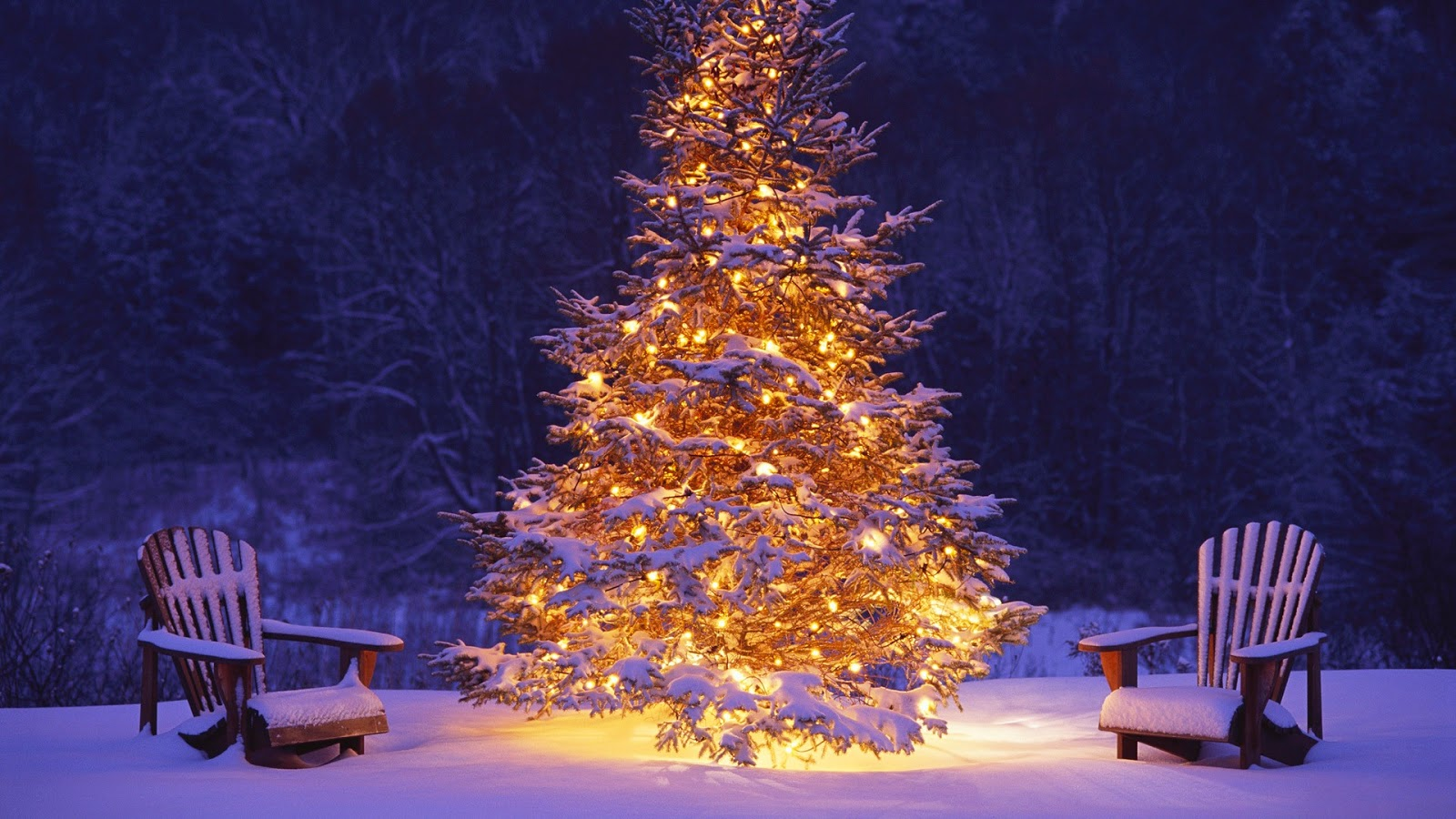 bright colourful christmas tree