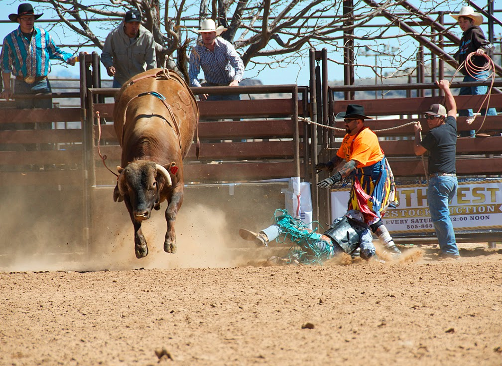 rodeo photography, Heidi Utz photography