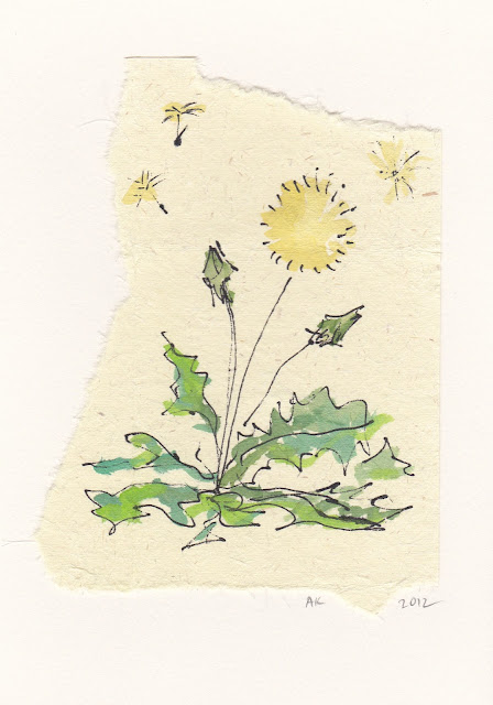 dandelion mixed media drawing