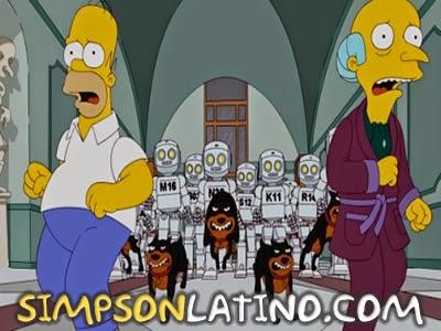 Los Simpson 23x17