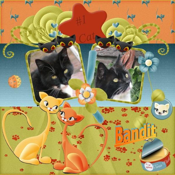 March 2016 – Bandit