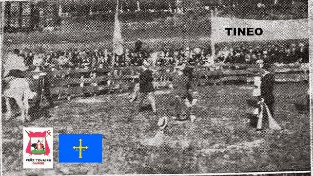 TOROS EN TINEO