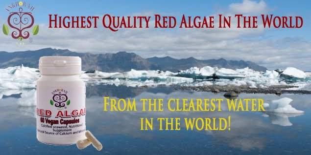 Red Algae