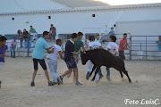 Fotos Afeiteira 2015