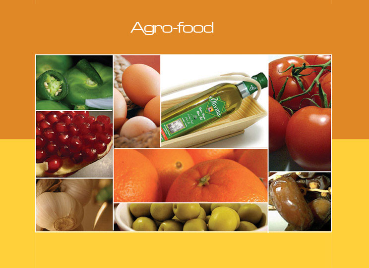 agro processing industry in india General information 1 name of the trade: agro processing 2 packaging supervisor in agro processing industry skilled worker in food mnc entrepreneur in agro processing introduction and scope of agro processing industries in india status, production and.
