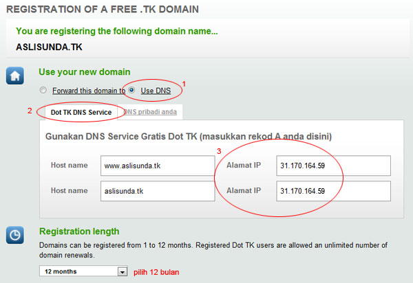 setting domain dot TK di idhostinger