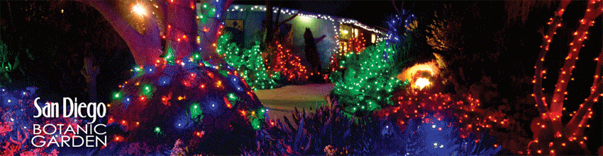 wwwGarciaMemoriescom 2014 Garden of Lights at San Diego Botanic