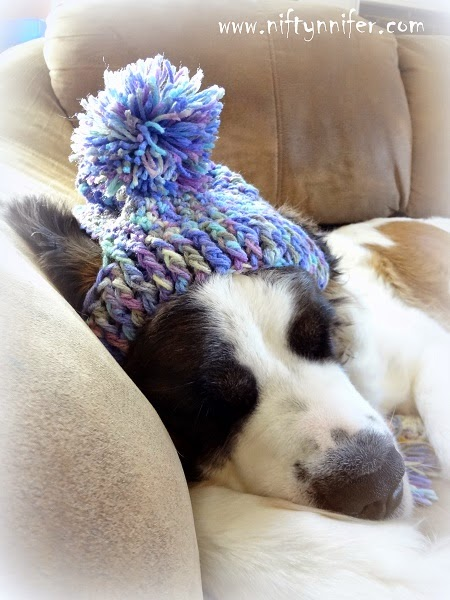 Niftynnifers Crochet Crafts Free Crochet Pattern A Silly Hat