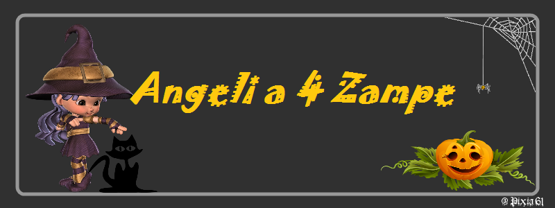Angeli a 4 Zampe