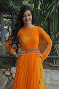 Loveleen Sasan photos at Ra Rammani launch-thumbnail-4