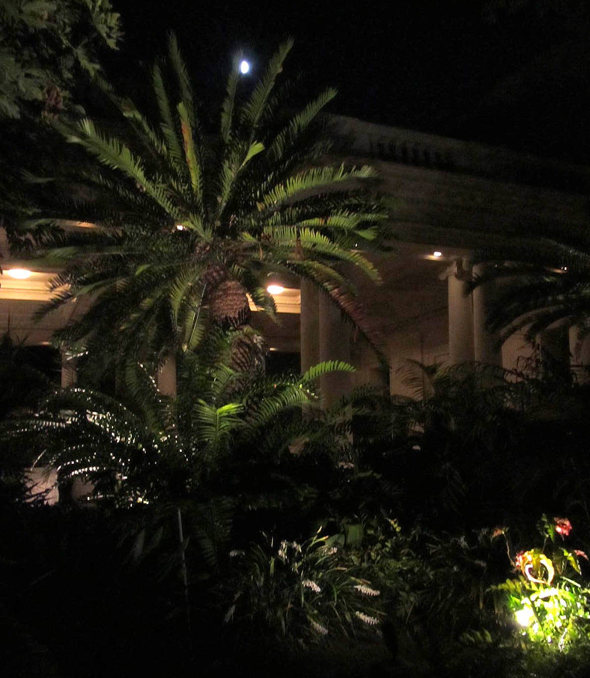 Fairy Yardmother Landscape Design: The Garden at Night ...