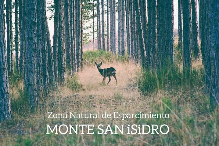 MONTE SAN ISIDRO (León)