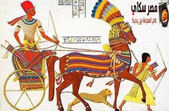 الجيش والاسطول فى مصر الفرعونية