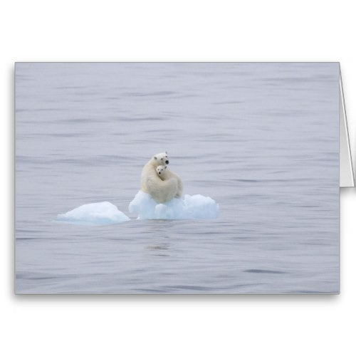 Mother Polar Bear and Cub | Lovely Wildlife Photo Card