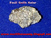 http://mustikasecang.blogspot.com/2013/01/galih-kelor.html