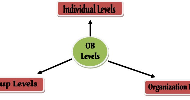 organizational behavior individual analysis Ncbi bookshelf a service of the national library of medicine, national institutes of health  application of behavior analysis to organizational settings 19 the .