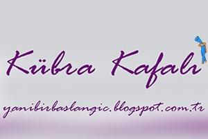 kozmetik blogu tanıtım yazısı