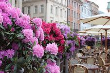 Latvian outdoor cafe