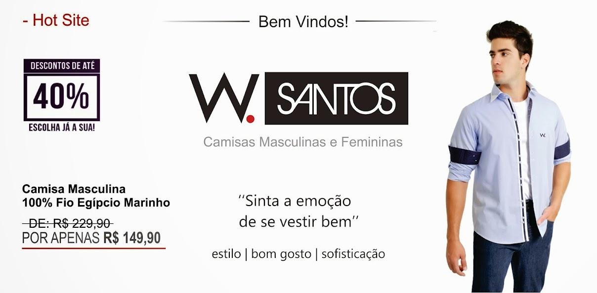 Hot Site W.Santos