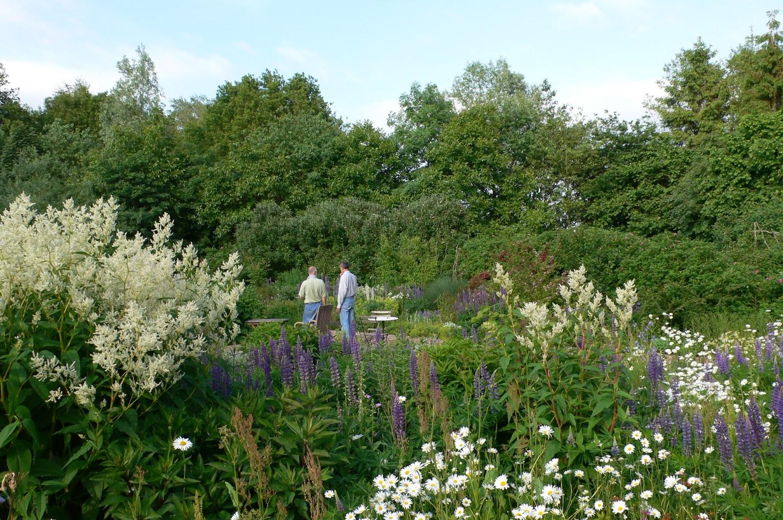 jan wilde een tuin juli 2015