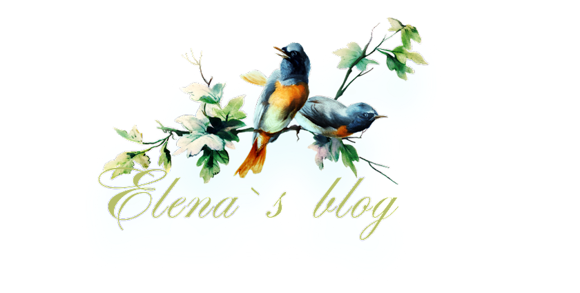 Elena`s Blog