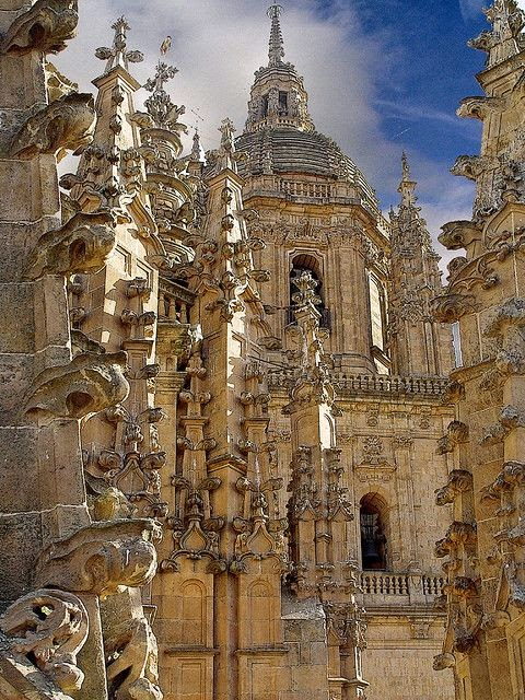 New Cathedral, Salamanca, Spain