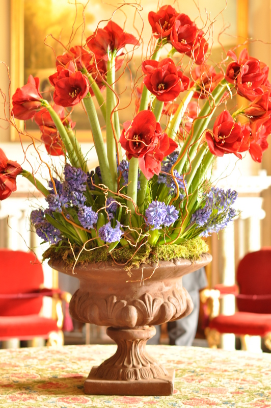the front hall was filled with the most wonderful perfume from the hyacinths