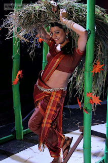Tashu-Kaushik-Stills-in-Saree