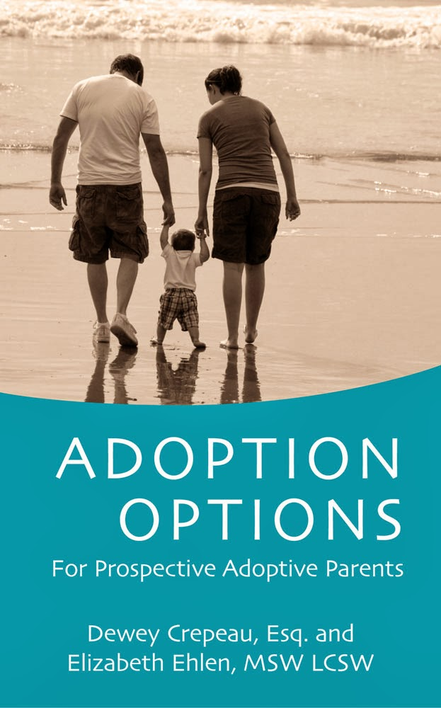 Adoption Options: For Prospective Adoptive Parents http://my.bookbaby.com/book/adoptionoptions