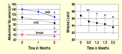 Lactoferrin trong 60 ngày giảm 40% mỡ ở bụng