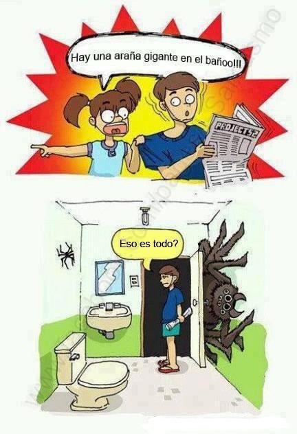 Imagenes De Baño Chistosas:imagenes chistosas fb: Hay Una Araña Gigante En El Baño