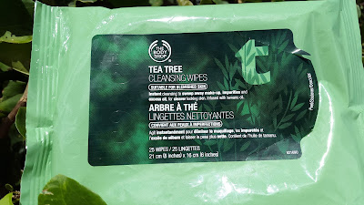 The Body Shop Tea Tree Cleansing Wipes packaging www.modenmakeup.com