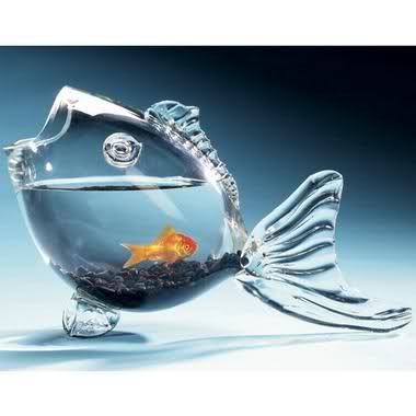 Makeupworld different fish bowl styles for Restaurants with fish bowl drinks near me