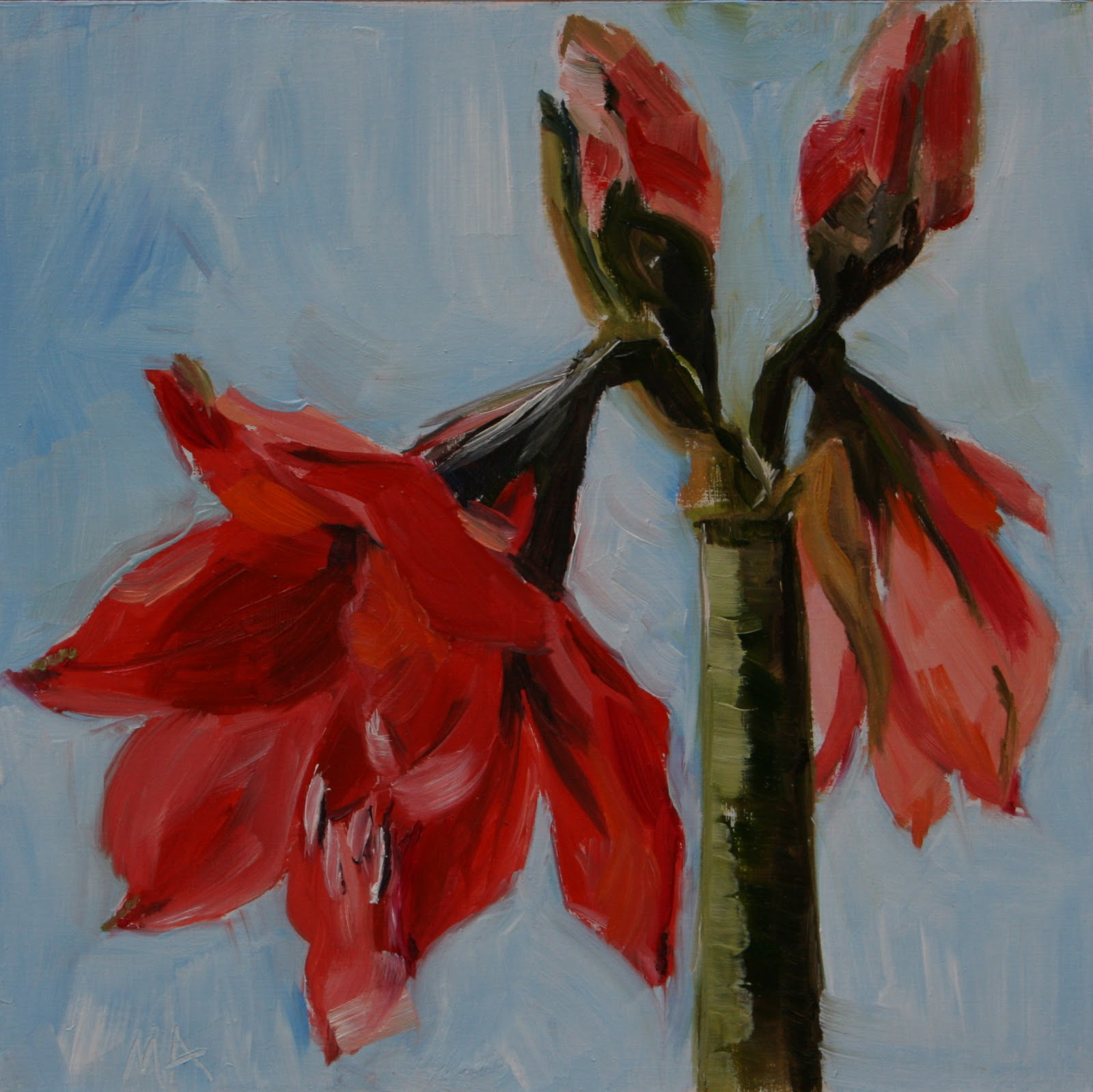 amaryllis,oil painting