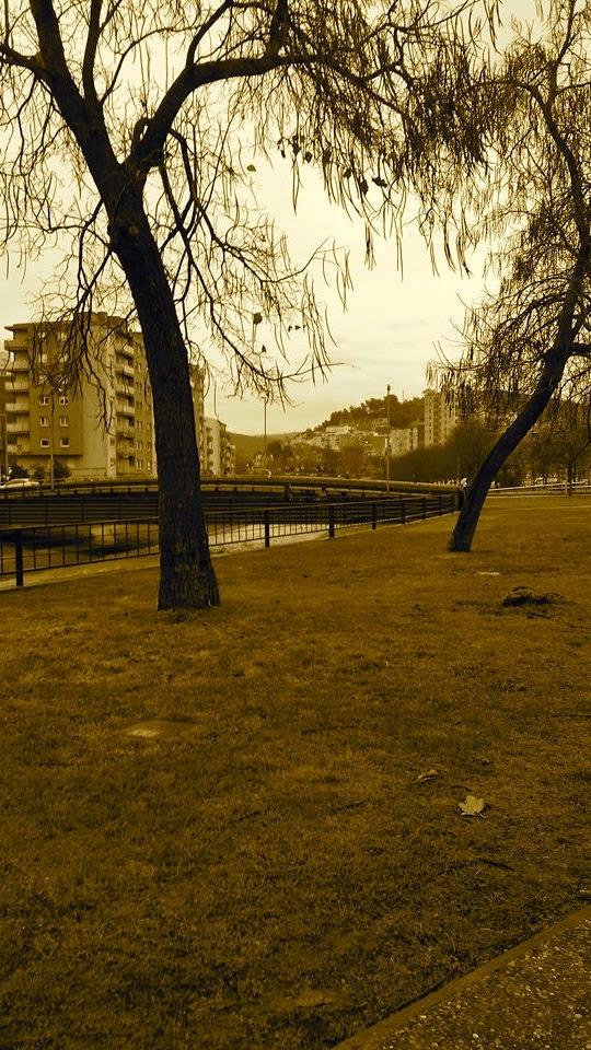 foto del jardí de la font del rei de girona