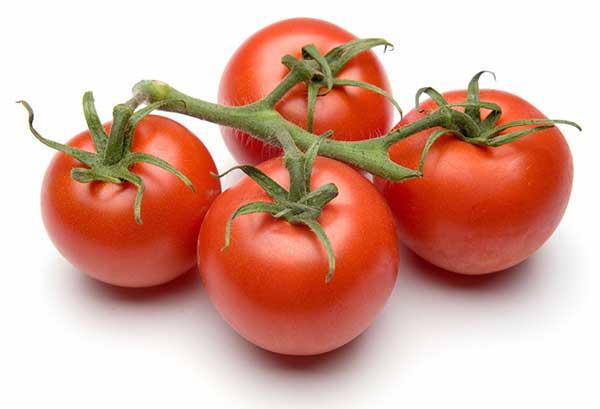 Manfaat dan khasiat tomat