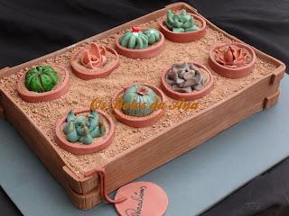 Cactos, bolo, bolo cactus, bolo cactos, cactus cacke