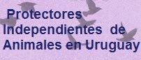 Protectores Independientes de Animales en Uruguay