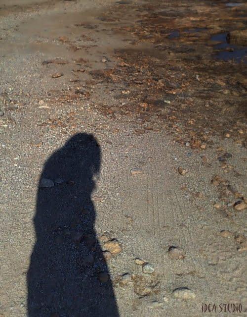 Μοναξιά ή μοναχικότητα; - ideastudio