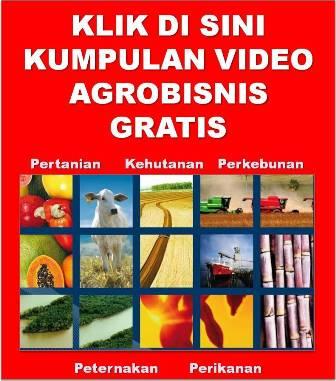 Video Agro