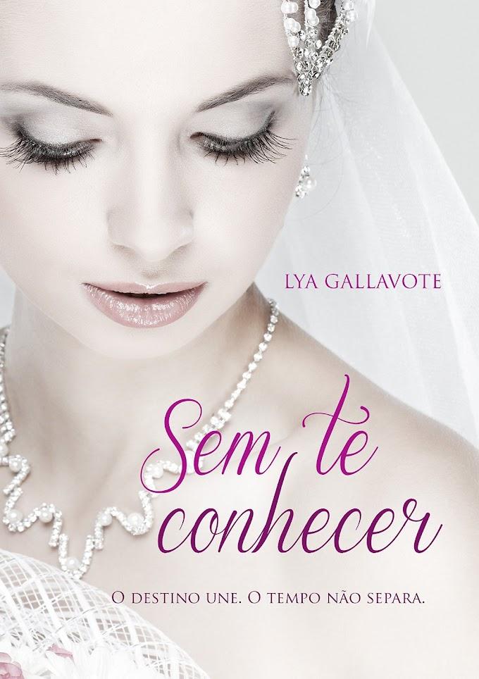 Resenha: Sem Te Conhecer - Lya Gallavote