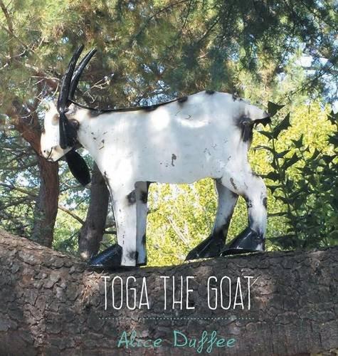 """""""Toga the Goat"""""""