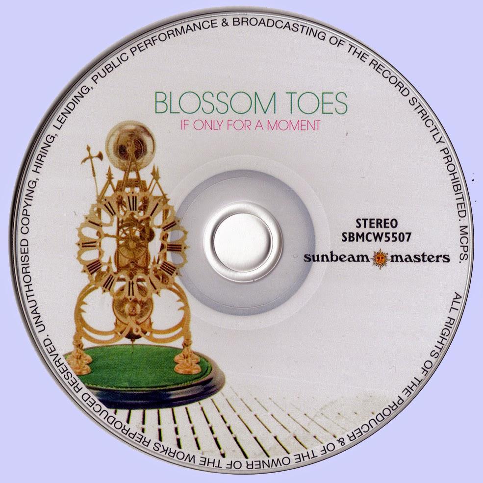 Blossom Toes Postcard