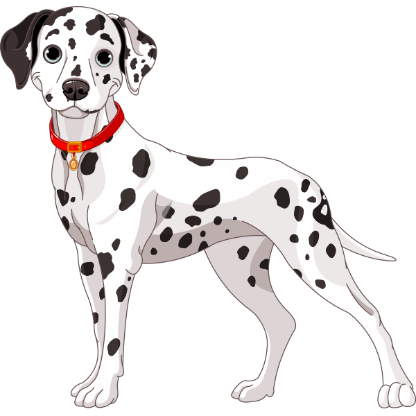 Spotted Dog