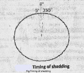 Timing-of-Shedding