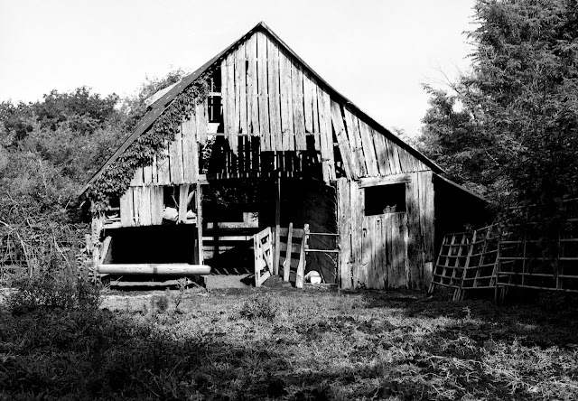 Mule Barn Hickory Ridge Studio