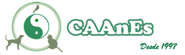 CAAnES