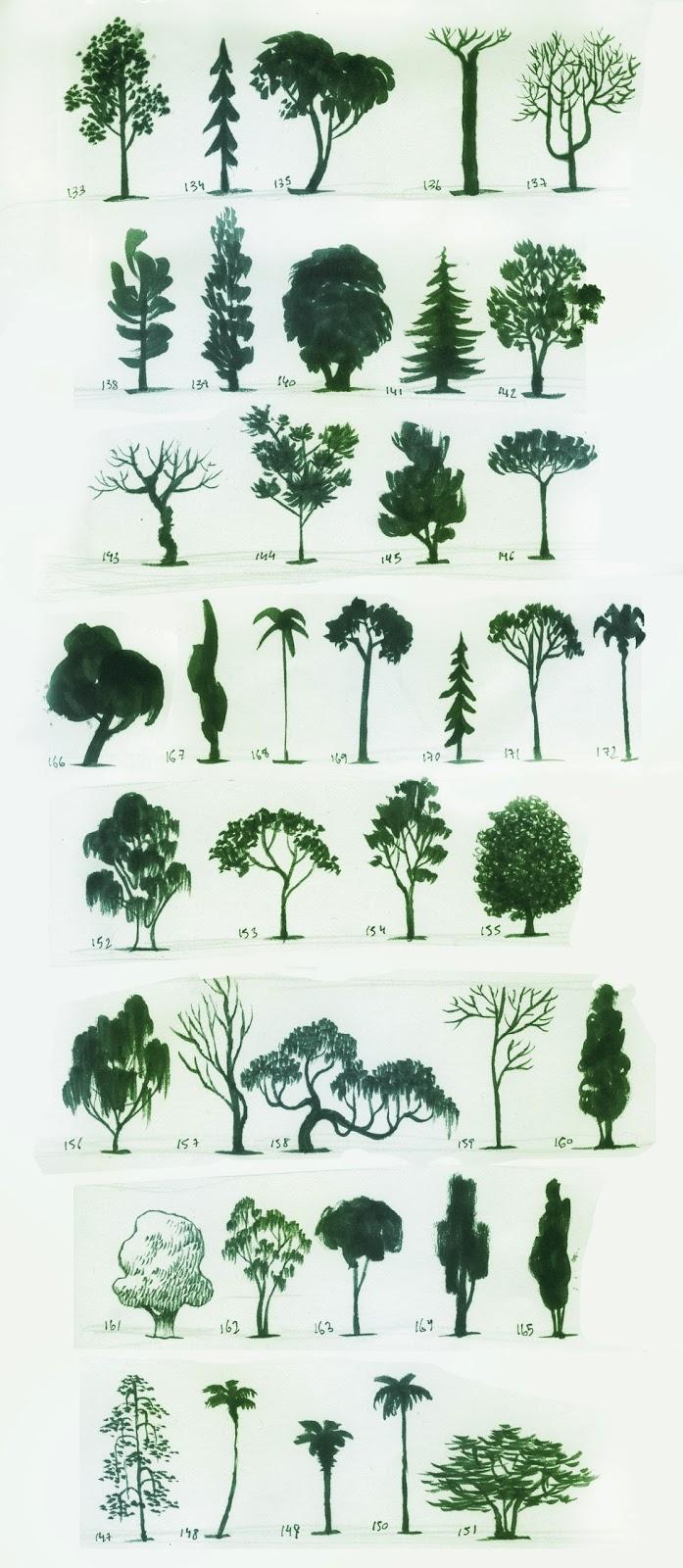 Santiago Verdugo Trees And Symbols