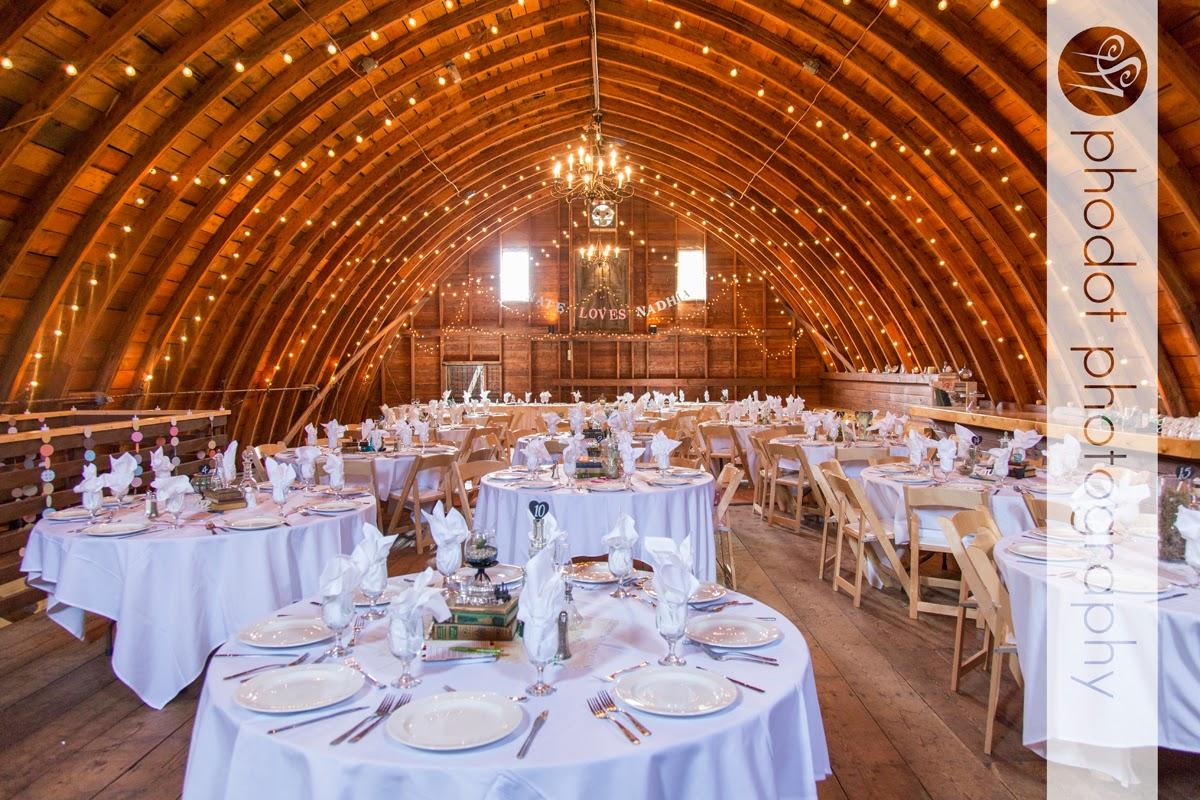 Frazee mn barn wedding