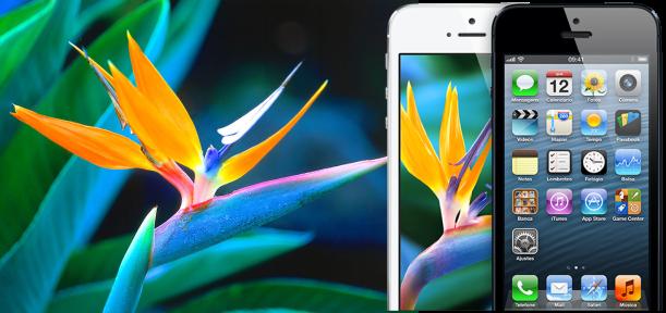 Retina Display - iPhone 5